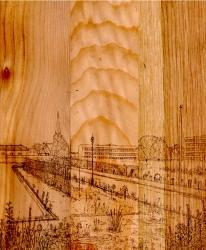 http://www.williamlindley.co.uk/files/gimgs/th-35_51_chapel-ash-on-wood_v2.jpg