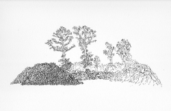 http://www.williamlindley.co.uk/files/gimgs/th-63_Untitled-10.jpg