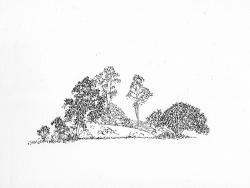 http://www.williamlindley.co.uk/files/gimgs/th-63_Untitled-2_v2.jpg